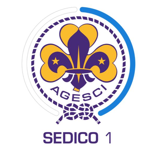 SCOUT SEDICO 1