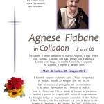 Fiabane Agnese